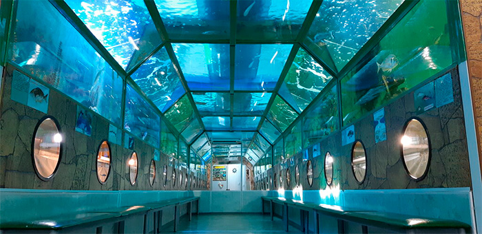 "морской аквариум ""батискаф"""