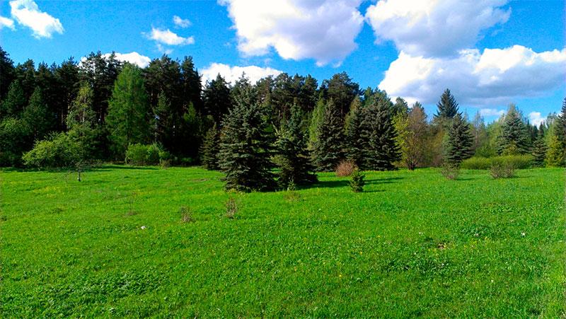 Ботанический сад Петрозаводска