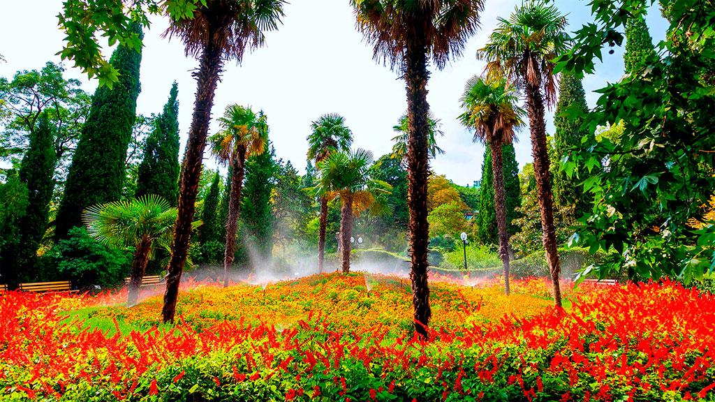 Ботанический сад (Никита)