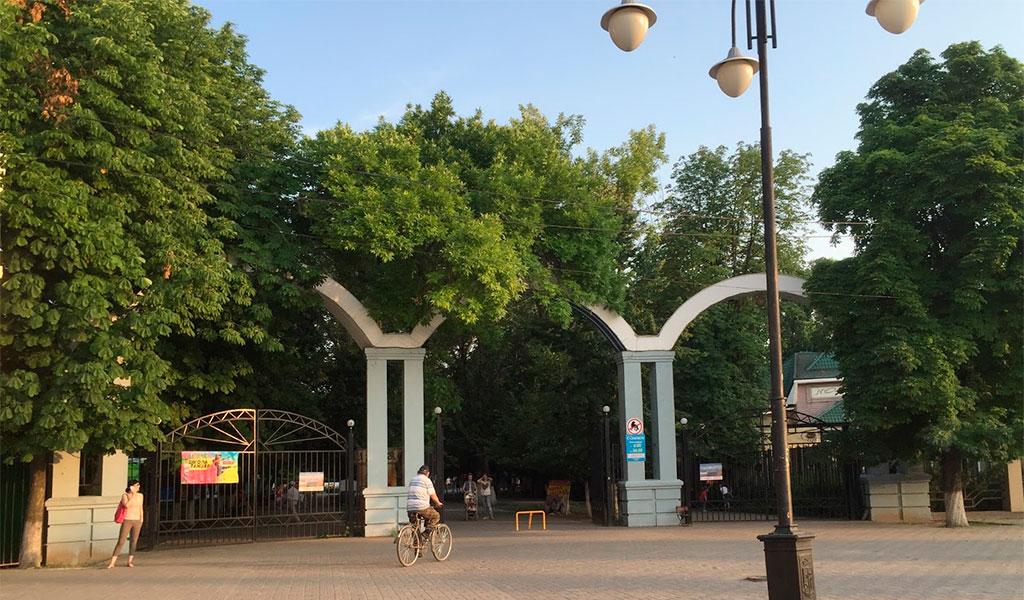 Городской парк культуры