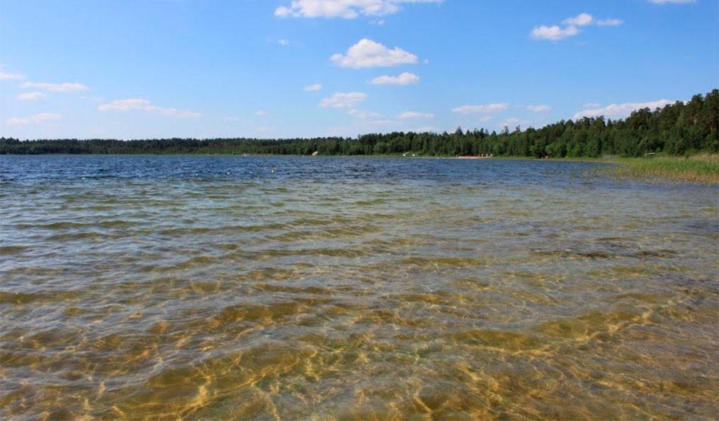 Белое озеро (Николаевский район)
